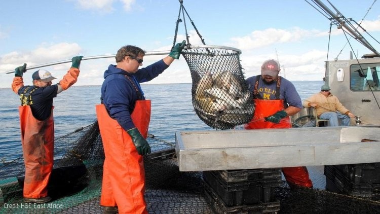 ILO Work in Fishing Convention Comes into Force