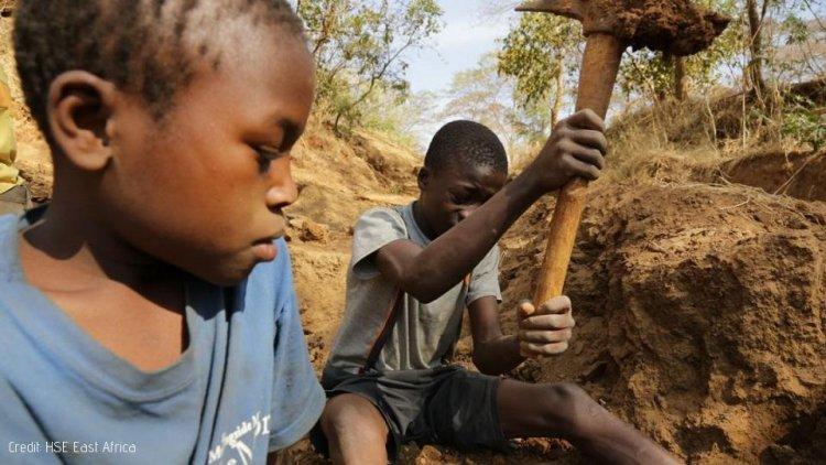Mozambique Approves List of Dangerous Work for Children
